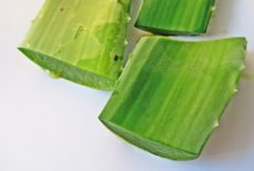Why Aloe is Your Best bet for Good Health